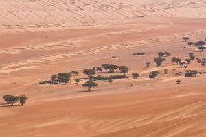 Wahiba Wüste, Oman 2011