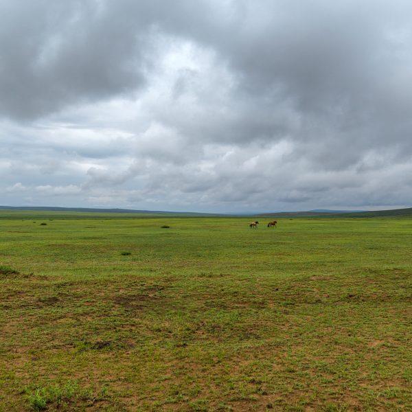 Mongolei 2017