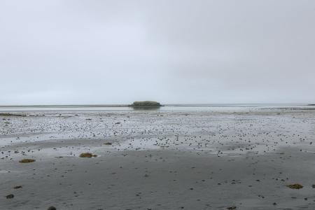 Nebel und Nieselregen an der Küste bei Höfn