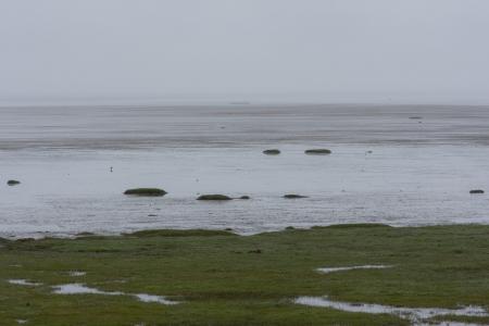 Zwischen Südküste und Ostfjorden, Island 2009