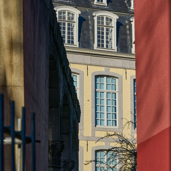 Ein sonniger Tag im Dezember, Aachen 2020 (Sony 90 2.8 Makro G OSS, ISO 100 1/500s F9)