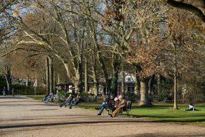 Ein sonniger Tag im Dezember, Aachen Hangeweiher 2020 (Sony 90 2.8 Makro G OSS, ISO 125 1/250s F6.3)