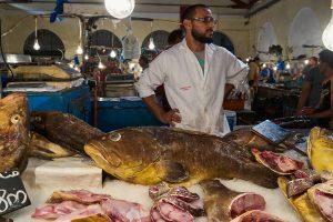 Zentralmarkt von Tunis, Tunesien, September 2019