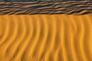 Wüste Tar, Indien Januar 2011