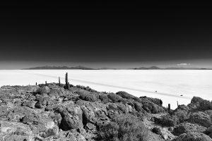 Insel Incahuasi im Salar de Uyuni, Bolivien, August 2016